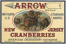 """RARE OLD ORIGINAL 1920'S INDIAN """"ARROW BRAND"""" CRANBERRIES CRATE LABEL NEW JERSEY"""