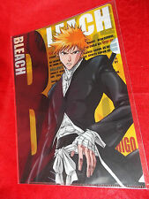 NEW BLEACH Ichigo Kurosaki A4 Size FILE FOLDER / SONY MUSIC AIME FES '06 LIMITED