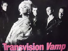 transvision Vamp I want Your Love (I Don't Want Your Money) 33RPM  020316 TLJ