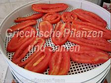 One Six Paste italiano Tomate de pera Frutas gigantes 10 Semillas frescas Balcón