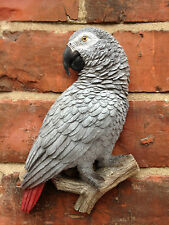 African Grey Parrot Plaque Vivid Arts Indoor Outdoor WAS £14.99 NOW £12.99