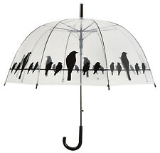 Fallen Fruits Transparent Umbrella - Birds on Wire