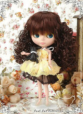 ☆╮Cool Cat╭☆ (50% Off)D2-1220 Blythe Doll Wigs # Chocolate