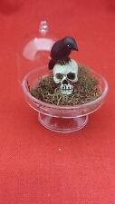 *Miniature Skull and Crow in Dome Display/dollhouse-goth-macabre-Halloween-witch