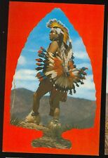 Post Card - Native American, Colorful Indian (unused (indians#1034*
