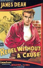 Movie Posters # 46 - 8 x 10 Tee Shirt Iron On Transfer Rebel Without a Cause