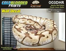 Removeable Wall Decal Snake Ball Python Cold Blooded Prints Sticker 003DHR