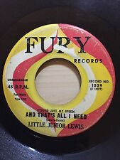 LITTLE JUNIOR LEWIS YOU'RE JUST MY SPEED & THAT'S ALL I NEED FURY RECORDS 1039