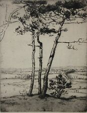 EMILE WALTERS-PAFA Impressionist-Hand Signed LIM.ED Etching-Valley of St. Barbe