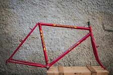 NOS Rossin Marathon MTB frameset small size 48 new old stock. New and Rare