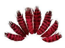 USA SELLER - 1 Dozen - Claret Grizzly Rooster Chickabou Fluff Feathers
