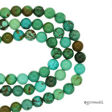 "15.6"" Genuine Chinese Turquoise Round Beads 6mm #82144"