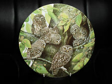 """Little Owl And Young"" Plate by Dick Twinney From ""Safe In the Nest"" Collection"