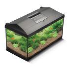 AQUAEL Aquarium komplett Set LEDDY 80 schwarz inkl LED Beleuchtung Filter Heizer