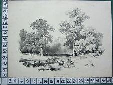 C1840 antiguos impresión ~ Vista De Parque ciervos Venados James Harding