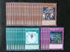 YU-GI-OH 40 CARD LIGHTSWORN DECK  *READY TO PLAY*