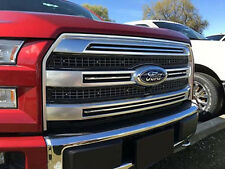 2015 2016 Ford F-150 Platnium With Camera Bug Screen Grill Inserts Kit