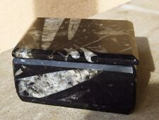 "Orthoceras & Ammonite Fossil Black Marble Stone Lidded Box Morocco 7.25"" Across"