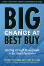 Big Change at Best Buy: Working Through Hypergrowth to Sustained Excellence