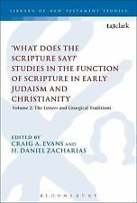 The Library of New Testament Studies: 'What Does the Scripture Say?' Studies...