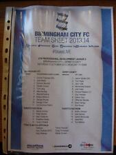 05/10/2013 BIRMINGHAM CITY YOUTH V Derby County Youth [a PUGNA Hills] (Colore Si