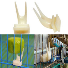 Tiger Peony Cockatiel Small Cage Special Small Fruit Fork Pet Bird Supplies New
