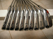 Palmer The Standard 85 Golf Irons 2-P,G. DynGold S300 Stiff. Vintage