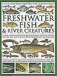 The Illustrated World Encyclopedia of Freshwater Fish and River Creatures : A...