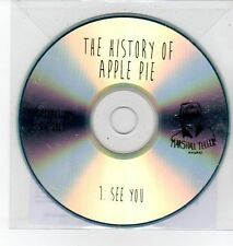 (DQ484) The History of Apple Pie, See You - 2013 DJ CD