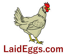 LaidEggs .com Domain Name Godaddy.com Hot Estibot   $2000 Business Potential