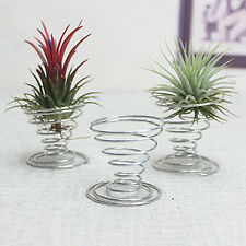 Air Plant Tillandsia Holder Container Flower Planter Home Office Decoration