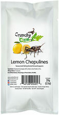 Edible Insects Edible Bugs Bush Tucker Lemon Chapulines 20g Crunchy Critters