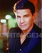 David BOREANAZ ( Angel )  Photo couleur 20 X 25 CM BUFFY CONTRE LES VAMPIRES