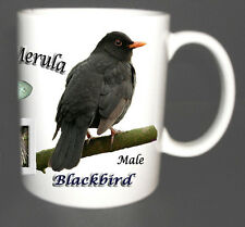 BLACKBIRD GARDEN BIRD MUG LIMITED EDITION XMAS GIFT NEW, BRITISH BIRDS