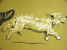 Cecil Aldin 1910 Kicking the Bad Little WEST HIGHLAND TERRIER Out Print Matted
