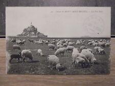 CPA - Grèves du Mont Saint Michel - Les Prés salés