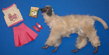 Vintage SKIPPER Dog Show Outfit #1929 Box Food Shoes Barbie 1966 Afghan Poseable