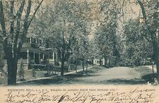 RICHMOND HILL QUEENS NY – Welling Street looking North from Orchard Avenue – udb