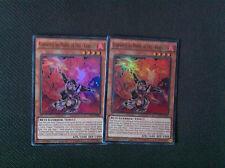 Yu-Gi-Oh lot de 2 Confrérie du Poing de Feu - Gorille CT11-FR003