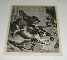 1879 magazine engraving ~ THE CAT AND THE MONKEY