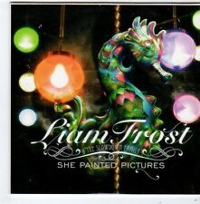 (FG308) Liam Frost & The Slowdown Family, She Painted Pictures - 2006 CD