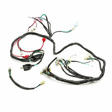 WIRING LOOM Baotian BT49QT9 Fits Pulse Scout Speedy JMStar 50cc C Bike Picture