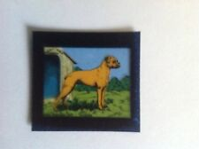VINTAGE BLUE CAP CHEESE FLIXIES (TRANSPARENCY) TRADE CARD DOG SERIES BOXER