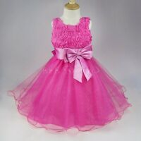 NEU Kinder Mädchen Fest Kleid Kommunionskleid Taufe Hochzeit Kinder Kleid Rose