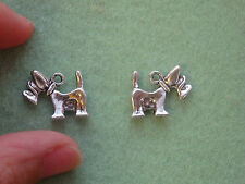 2 Tibetan silver dog charm pendant schnauzer wholesale job lot