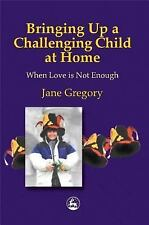 Bringing Up a Challenging Child at Home: When Love is Not Enough-ExLibrary
