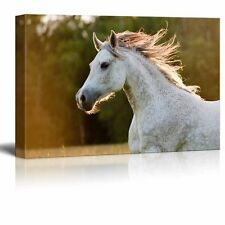 "Canvas Prints Wall Art - Running White Arabian Horse - 12"" x 18"""