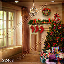 Christmas 10'x10' Computer-painted Scenic Photo Background Backdrop SZ408B11