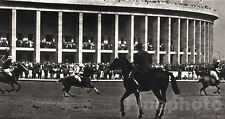 1936 Vintage 11x14 OLYMPICS Germany POLO Equestrian Horse Photo Art ~ PAUL WOLFF