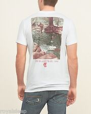 ABERCROMBIE & FITCH Printed Logo Graphic Tee Med/Large Available *BNWT*  A&F